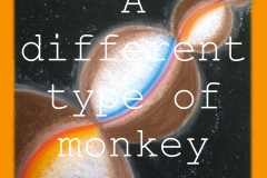 A different type of monkey_Artwork2504